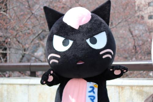 20170402_目黒イーストエリア桜まつり (1123)