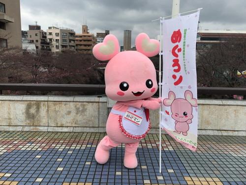 20170401_目黒イーストエリア桜まつり (1064)