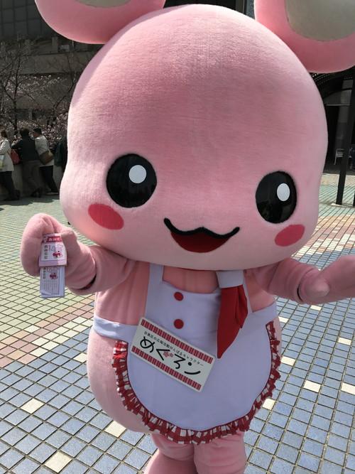 20170402_目黒イーストエリア桜まつり (5)